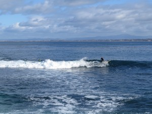 Surfing off Lover's Point, Pacific Grove, CA
