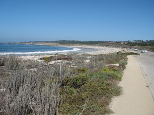 Spanish Bay Beach