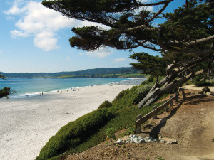 The beautiful white sands of Carmel Beach