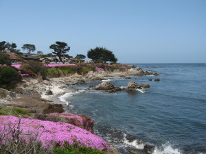 Spring time Pacific Grove coast
